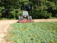 Rolled Cover Crop